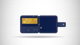 Masterpass Animation Screen
